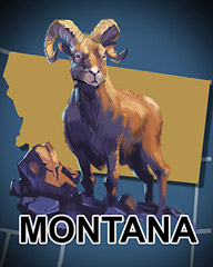 Montana Badge - Aces Up! HD