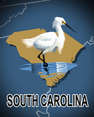 South Carolina Badge - Cookie Connect