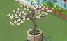 Dogwood Tree Badge - Solitaire Gardens