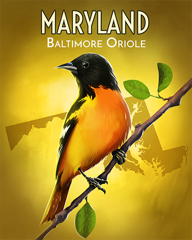 Baltimore Oriole Badge - Claire Hart: Secret In The Shadows
