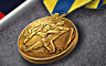 Navy Expeditionary Medal Badge BATTLESHIP: Naval Combat May 7, 2013