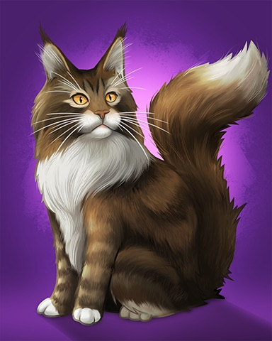 Maine Coon Badge - Aces Up! HD