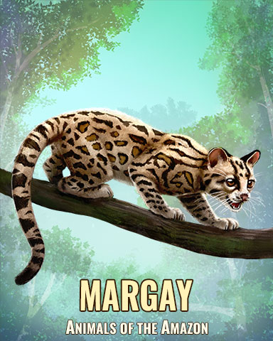 Margay Badge - First Class Solitaire HD