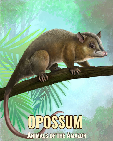 Opossum Badge - Snowbird Solitaire