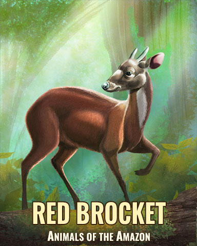 Red Brocket Badge - Poppit! Bingo