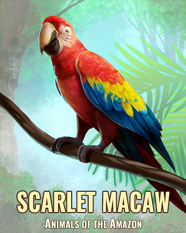 Scarlet Macaw Badge - Jigsaw Treasure Hunter HD
