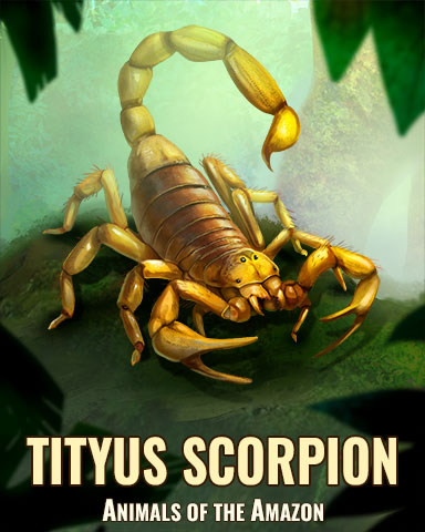 Tityus Scorpion Badge - Sweet Tooth Town