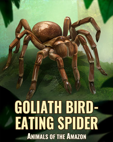 Goliath Bird-Eating Spider Badge - Trizzle