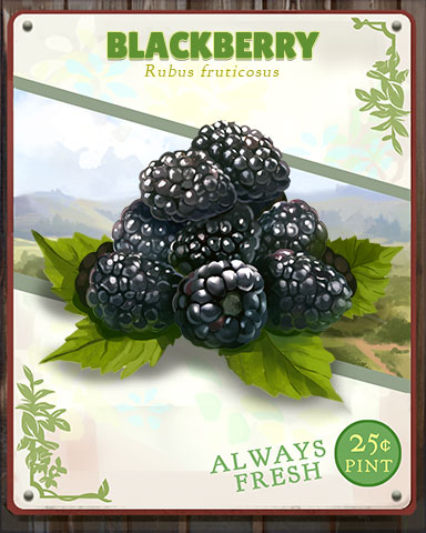 Blackberry Produce Badge - Trizzle