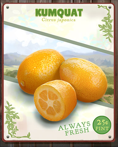 Kumquat Produce Badge - Word Search Daily HD