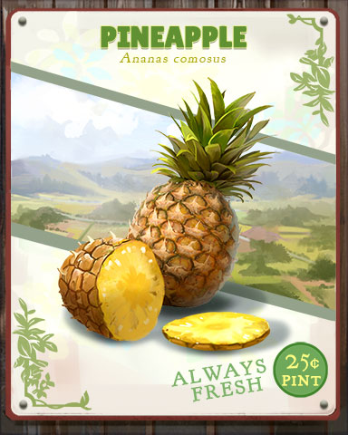 Pineapple Produce Badge - Payday Freecell HD