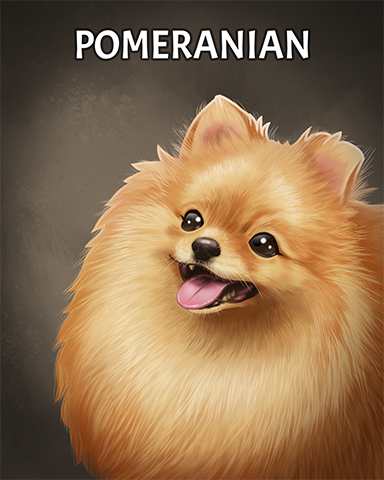 Pomeranian Badge - Claire Hart: Secret In The Shadows