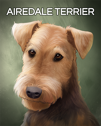 Airedale Terrier Badge - Canasta HD
