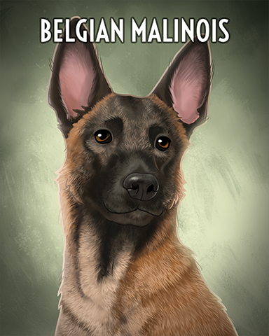 Belgian Malinois Badge - Spades