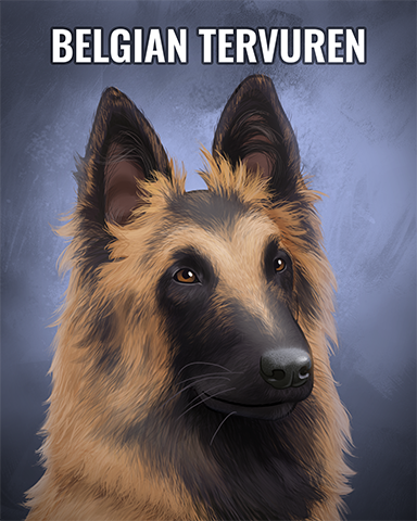 Belgian Tervuren Badge - Claire Hart: Secret In The Shadows