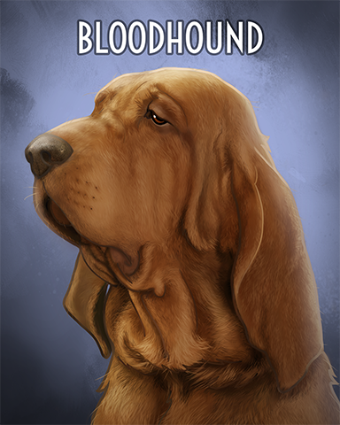 Blood Hound Badge - First Class Solitaire HD