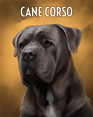 Cane Corso Badge - Everyone Wins Bingo
