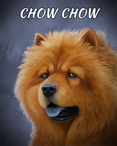 Chow Chow Badge - Poppit! Sprint