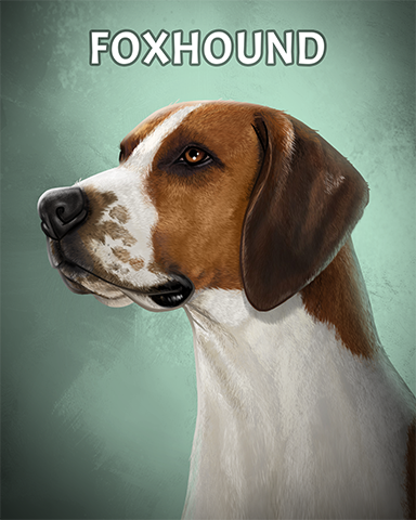 Foxhound Badge - Cookie Connect