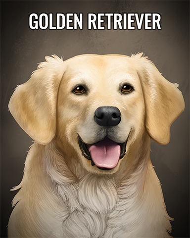Golden Retriever Badge - First Class Solitaire HD