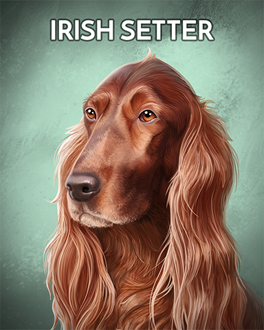 Irish Setter Badge - Poppit! Sprint