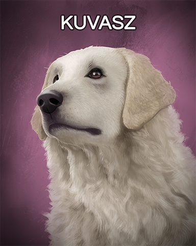 Kuvasz Badge - Payday Freecell HD
