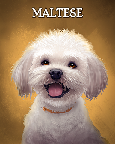 Maltese Badge - Pogo Daily Sudoku