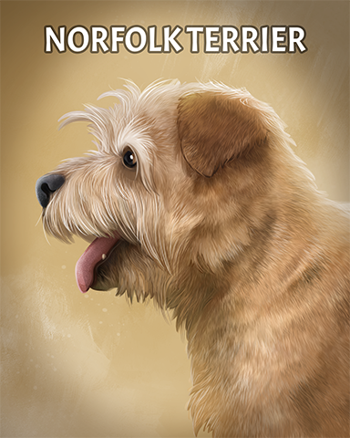 Norfolk Terrier Badge - Mahjong Garden HD