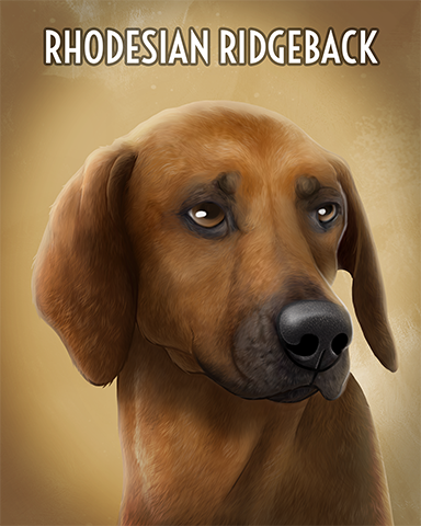 Rhodesian Ridgeback Badge - Poppit!™ HD