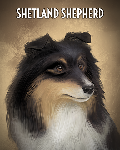 Shetland Sheepdog Badge - Poppit! Party