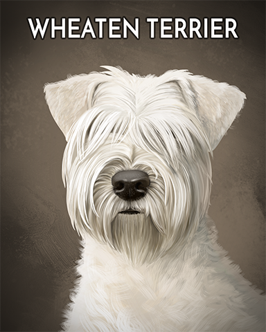 Wheaten Terrier Badge - Cookie Connect
