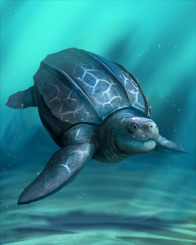Leatherback Turtle Badge - World Class Solitaire HD