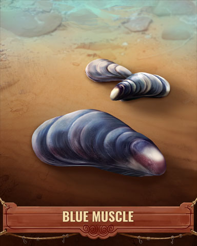 Blue Muscle Shell Badge - Tri-Peaks Solitaire HD