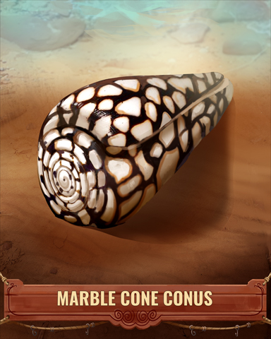 Marble Cone Conus Shell Badge - Jet Set Solitaire