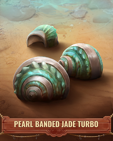 Pearl Banded Jade Turbo Shell Badge - Jigsaw Treasure Hunter HD