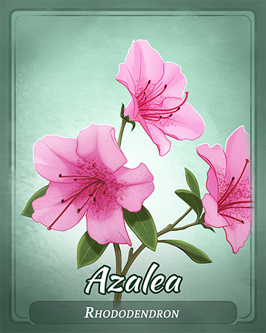 Azalea Badge - First Class Solitaire HD