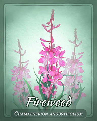 Fireweed Badge - Sweet Tooth Town