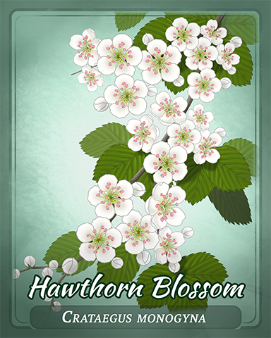 Hawthorn Blossom Badge - Hog Heaven Slots