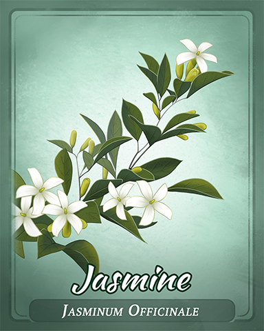 Jasmine Badge - Dominoes