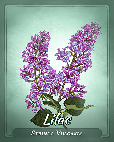 Lilac Badge - Poppit! Sprint