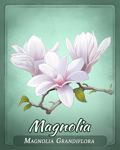 Magnolia Badge - Cross Country Adventure