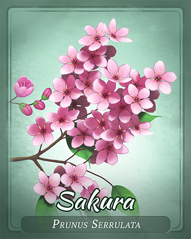 Sakura Badge - Solitaire Gardens