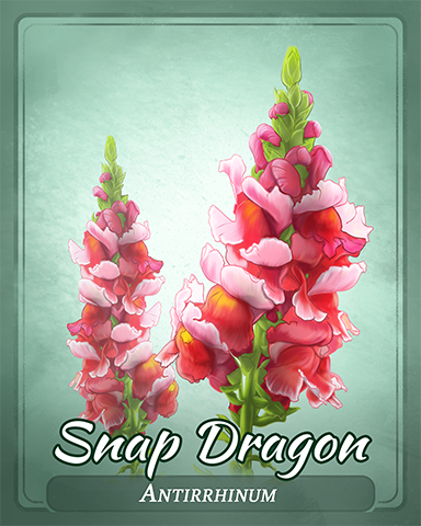 Snap Dragon Badge - Crossword Cove HD