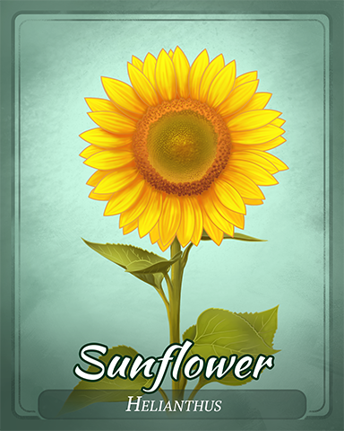 Sunflower Badge - Phlinx II