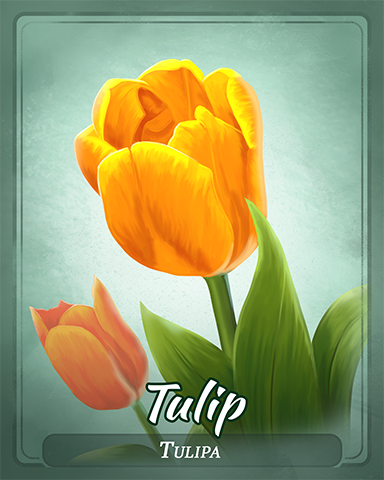 Tulip Badge - Mahjong Escape