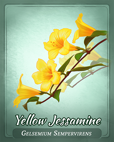 Yellow Jessamine Badge - Postcards From Britain